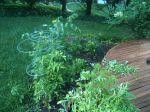 Backyard Gardening Without a GreenThumb